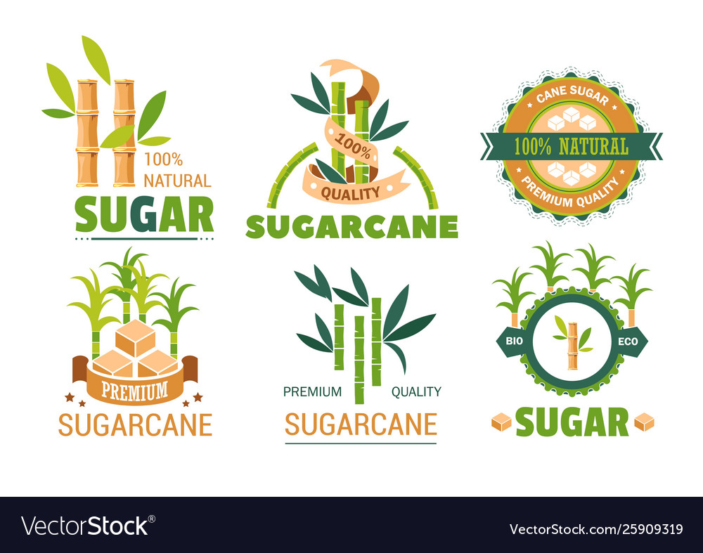 Sugarcane Icon Google Search With Images Sugarcane Icon