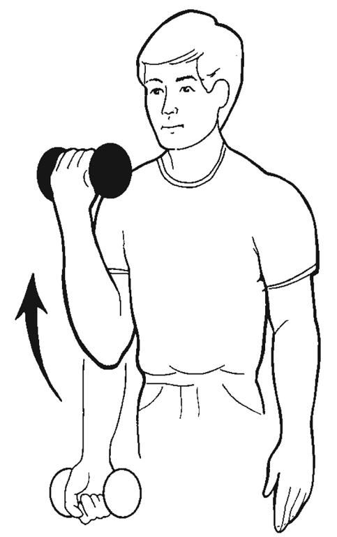 Pin On Rotator Cuff Impingment Exercises Amp Info