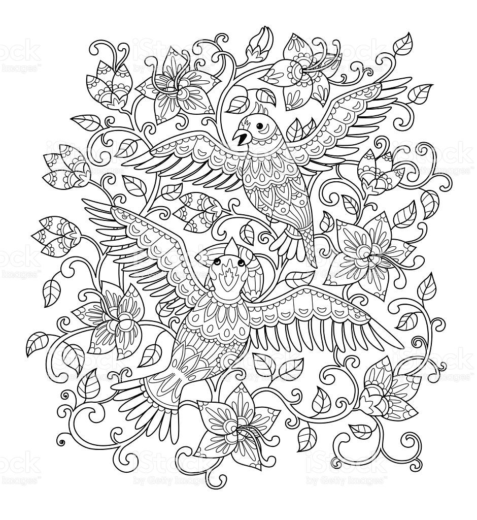 Hand drawn decorative outline birds in the bush flowers. Adult ...