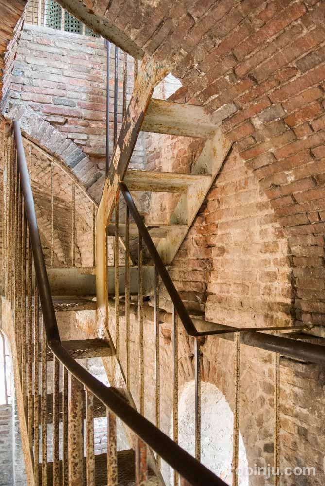La Torre Guinigi de Lucca - Toscana