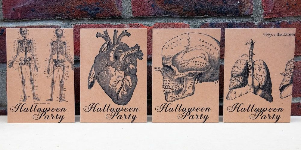 Halloween Party Invite Cards – Vintage Anatomical Drawings Style Adult / Teen... in Home, Furniture & DIY, Celebrations & Occasions, Cards & Stationery   eBay