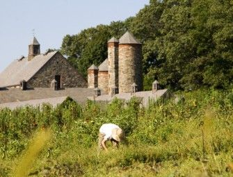 Hike and Organic Farm Tour Stone barns