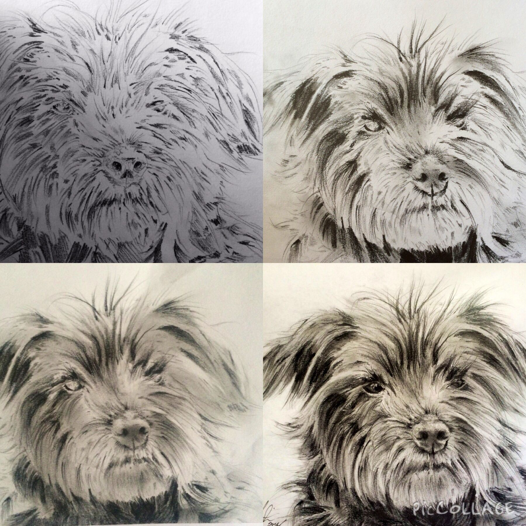 Progress shots of Milly