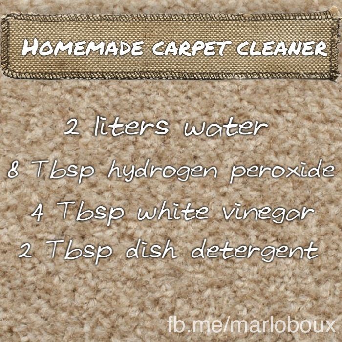 Homemade Carpet Cleaner Reduce Your Family S Exposure To