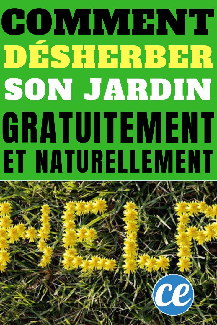 Comment Desherber Son Jardin Naturellement Et Gratuitement