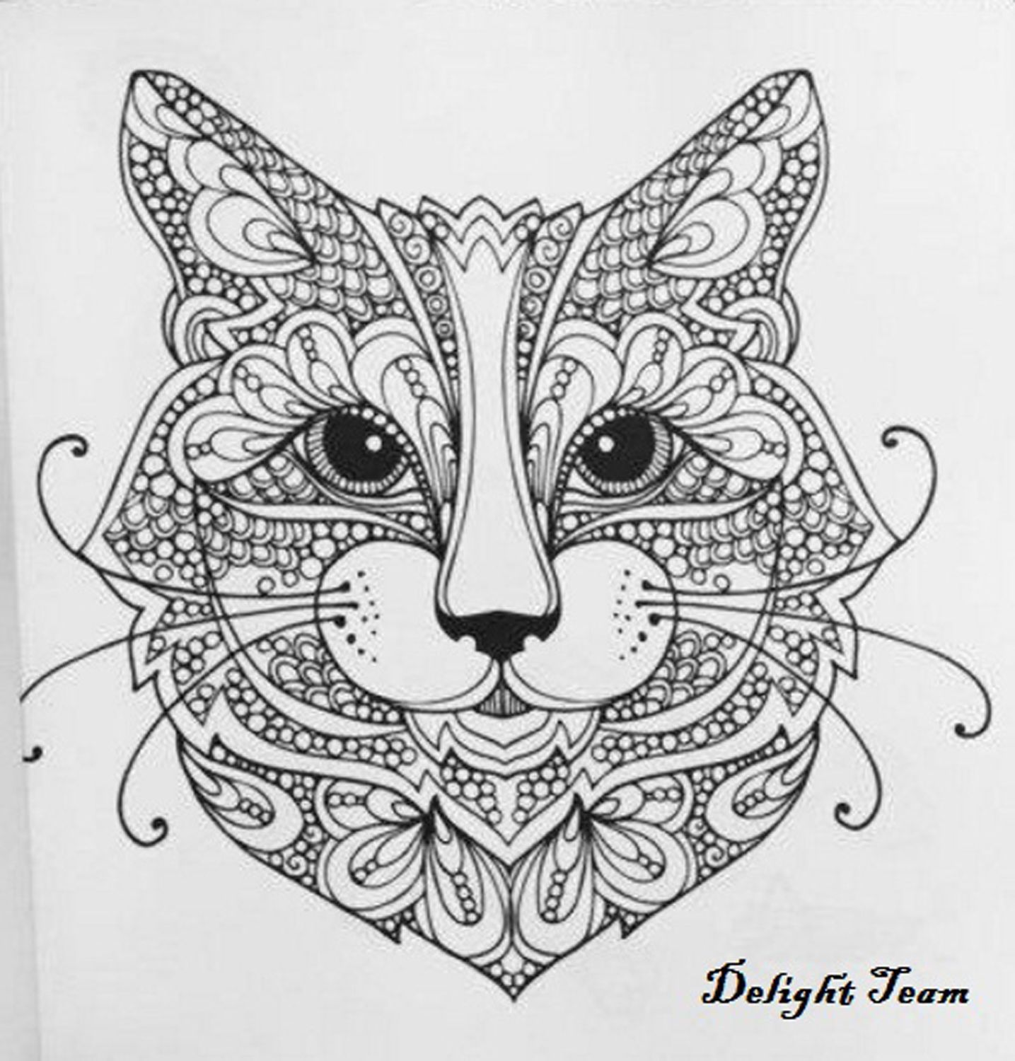 Coloring Book For Adults Cute Cats Stress Relief Designs