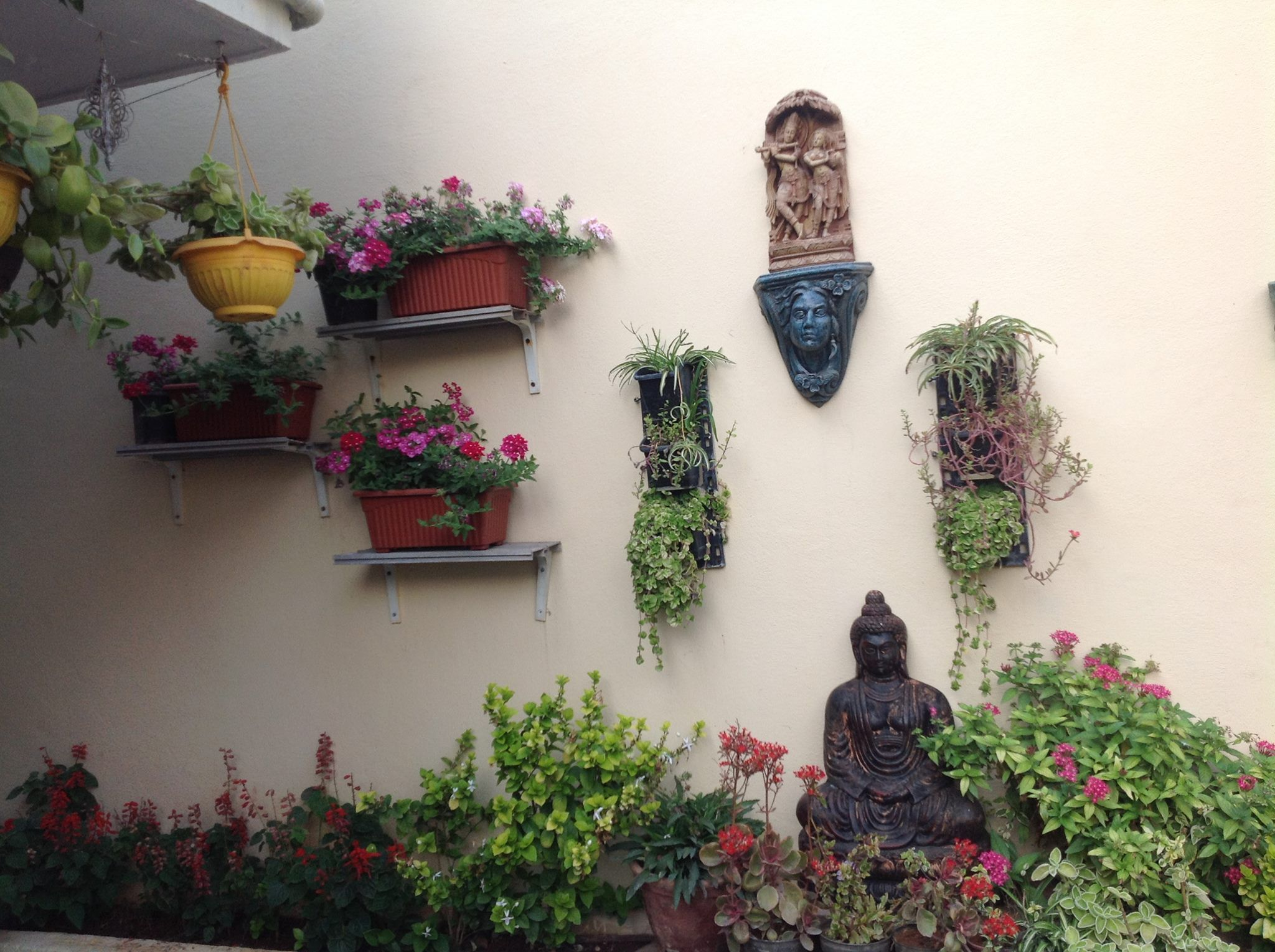 Nice And Cool Garden. Traditional DecorTraditional ...