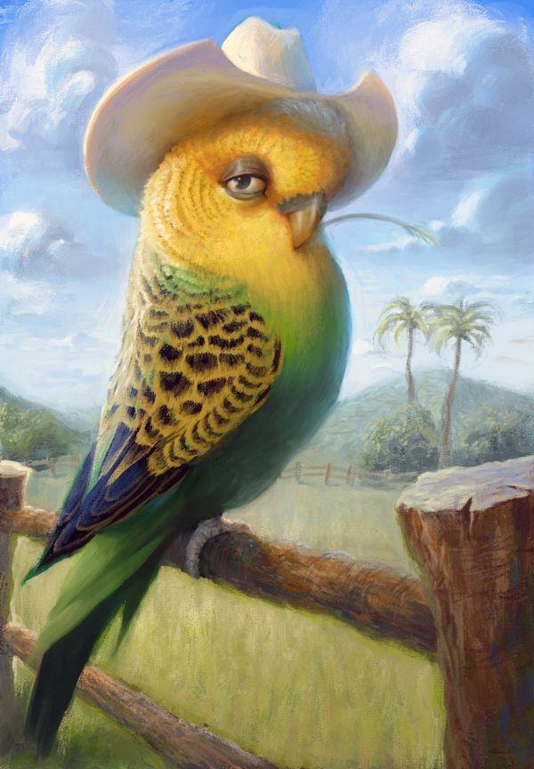 рисунки попугаев смешные