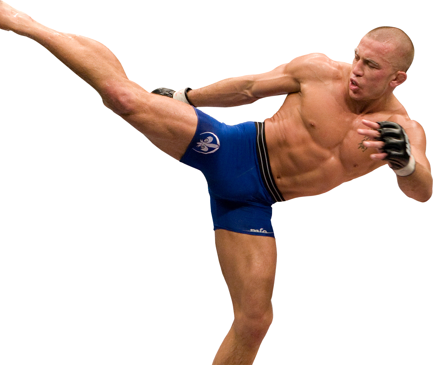Image result for gsp champion no background