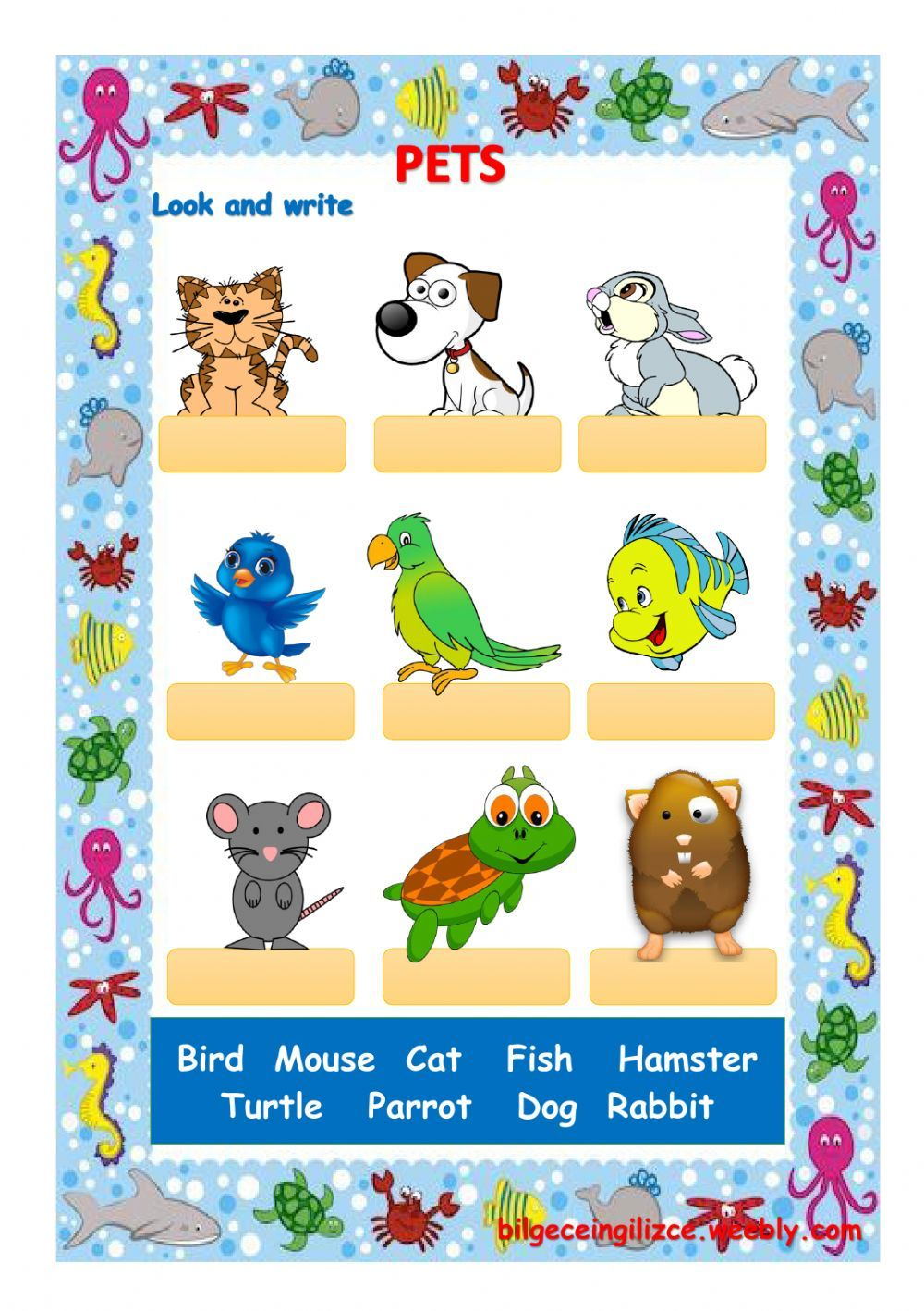 Animals interactive and downloadable worksheet. You can do