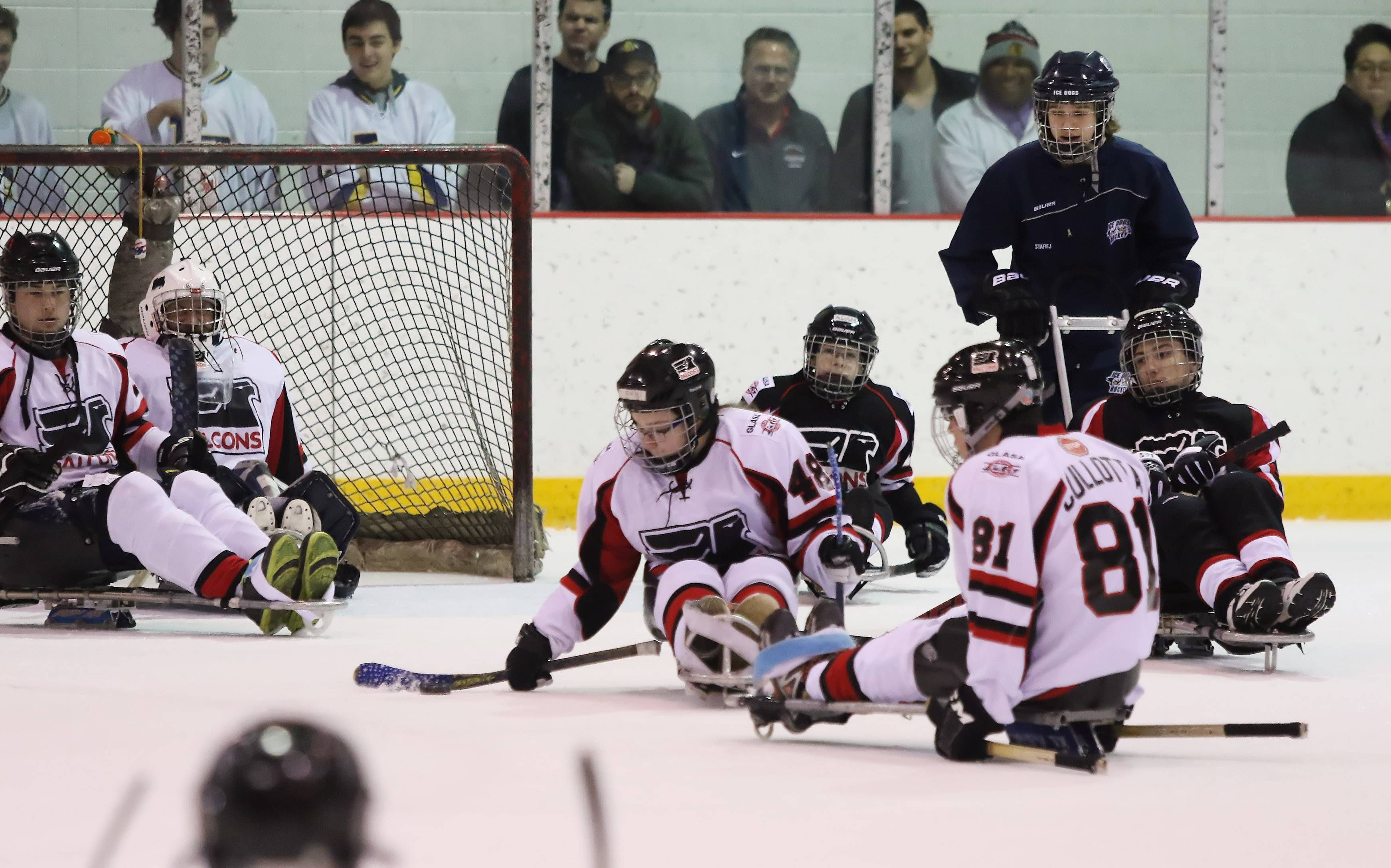 Disabled Athletes Find Even Playing Field On Ice Sled Hockey Hockey Games Hockey Teams