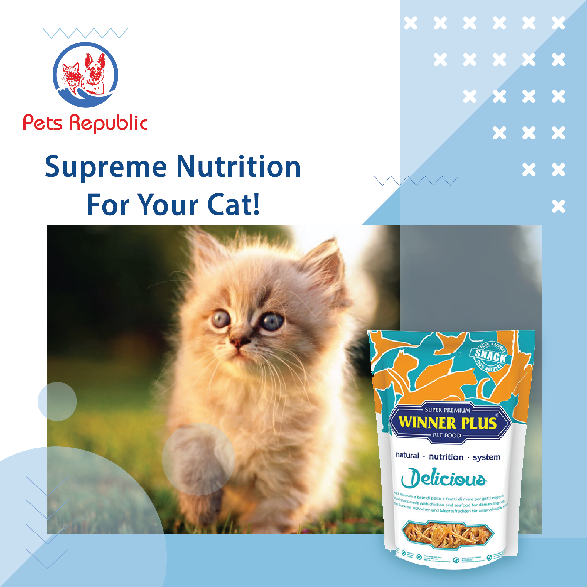 Winner Plus Delicious Cat Food 100g In 2020 Food Animals Cat Food Natural Nutrition