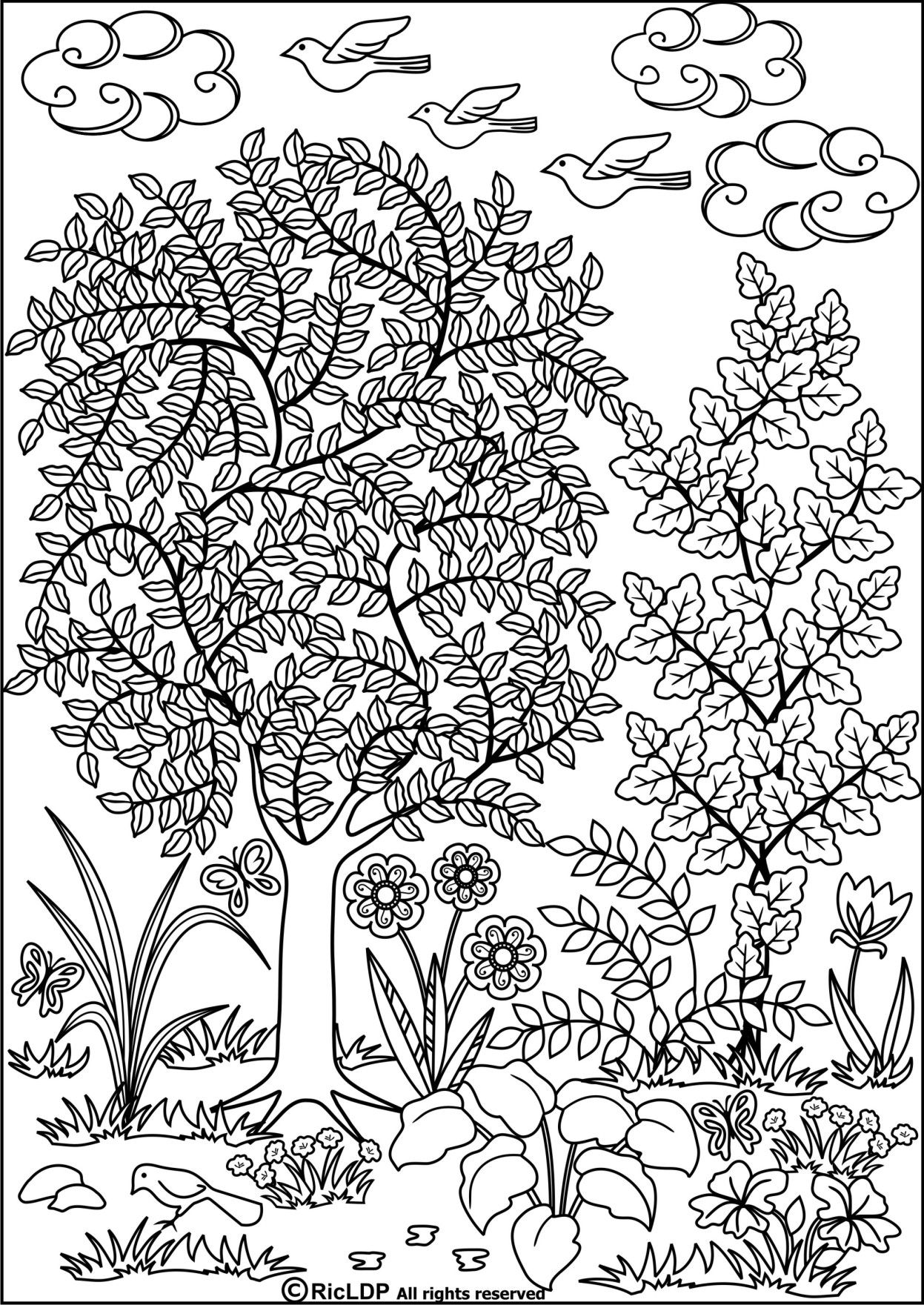 Pin On Garden Coloring Pages [ 1761 x 1247 Pixel ]