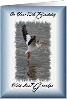75th Birthday / Grandpa / Pelican in flight Card by Greeting Card Universe. $3.00. 5 x 7 inch premium quality folded paper greeting card. Birthday cards & photo Birthday cards from Greeting Card Universe will bring a smile to your loved ones' face. Send a paper card to your friends and family this year. Send a paper birthday card from Greeting Card Universe this year. This paper card includes the following themes: Madeline Allen, Digital-Art, and SmudgeArt. Set your...