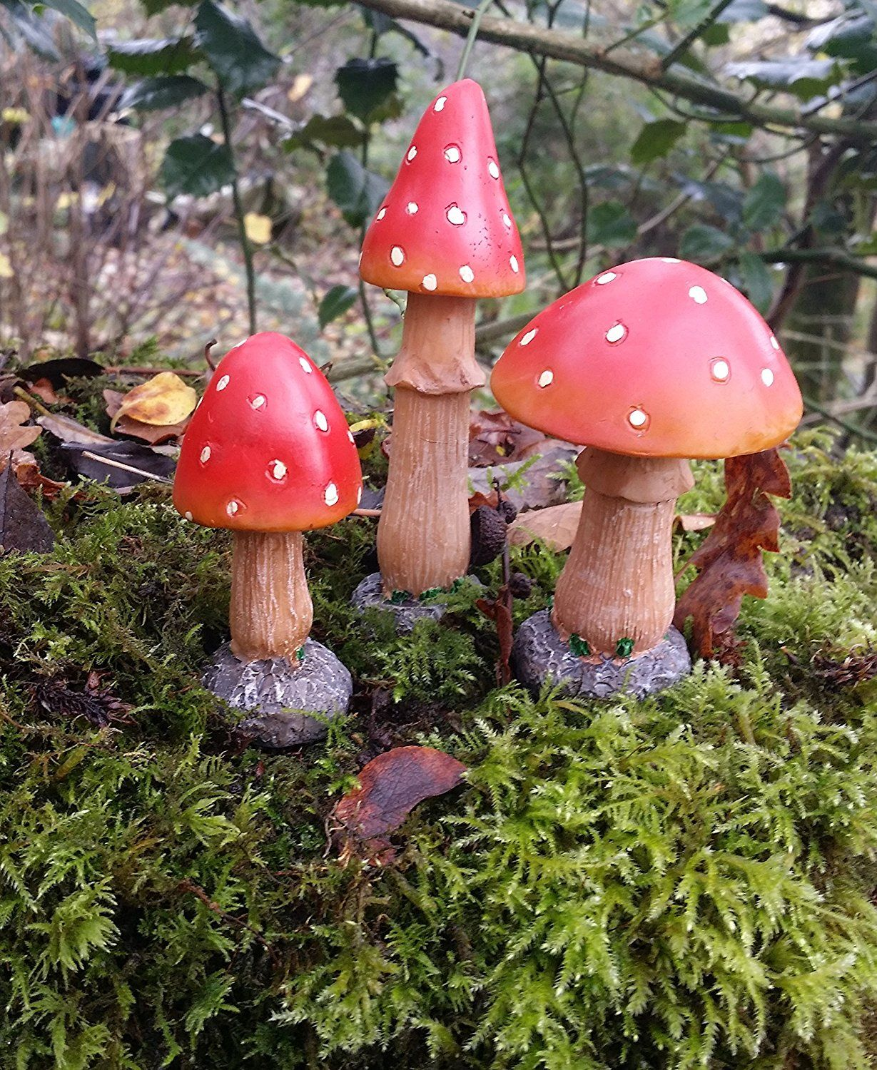 a0ec8e65e43910d0d4c30d284a47d73c - How To Get Rid Of Toadstools In Your Lawn