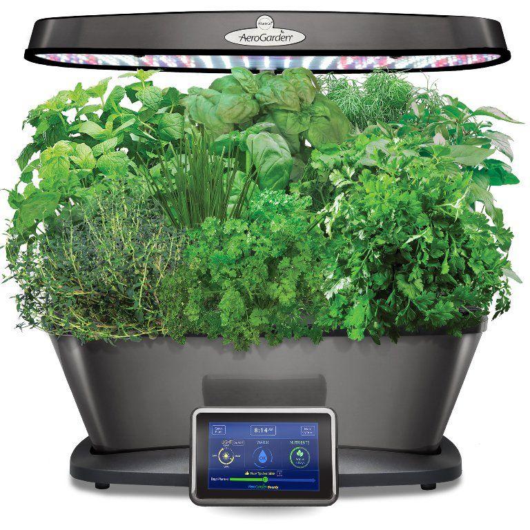 Grow Indoor Veggies, Herbs and Flowers with AeroGarden