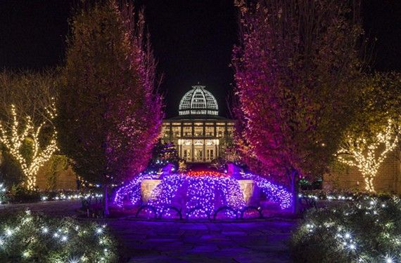 Photo of 2013 dominion gardenfest of lights by don williamson lewis ginter botanical garden for Lewis ginter botanical gardens christmas