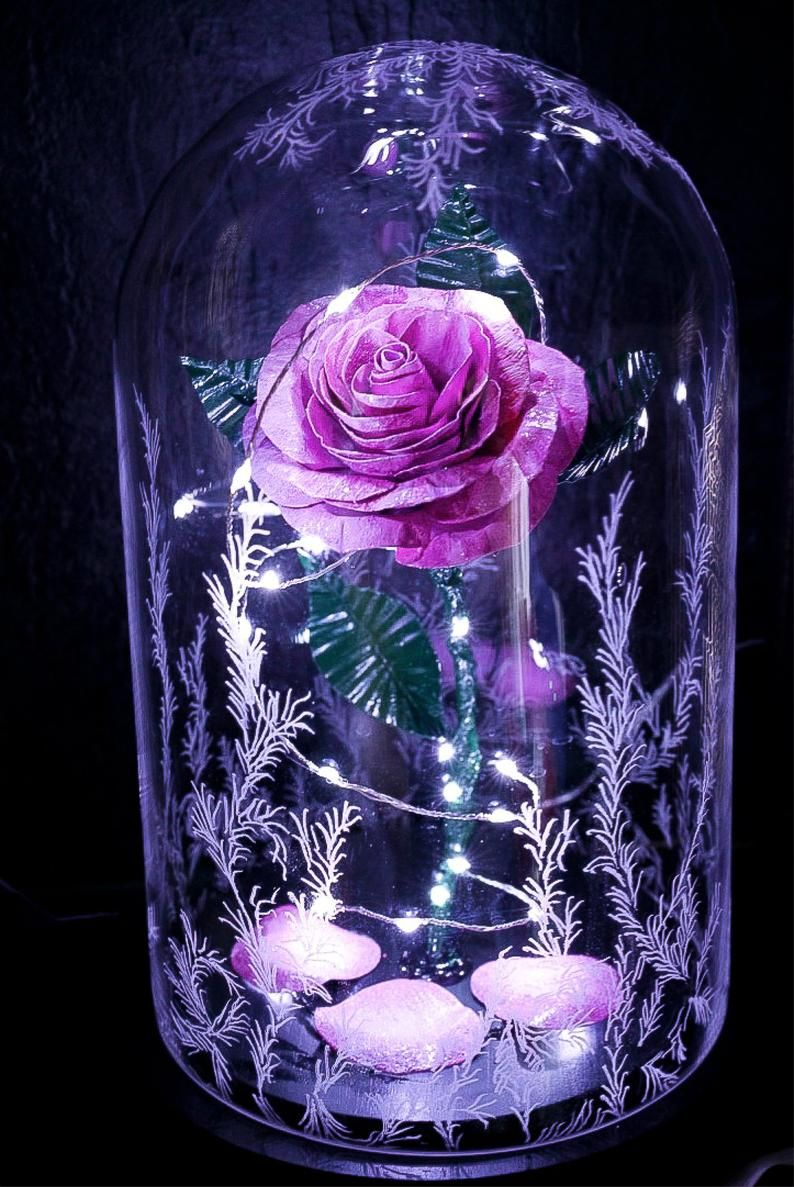 Beauty And The Beast Rose Glass Dome Pink Metal Forever Image 2 Beauty And The Beast Wallpaper Beauty And The Beast Flower Cute Galaxy Wallpaper