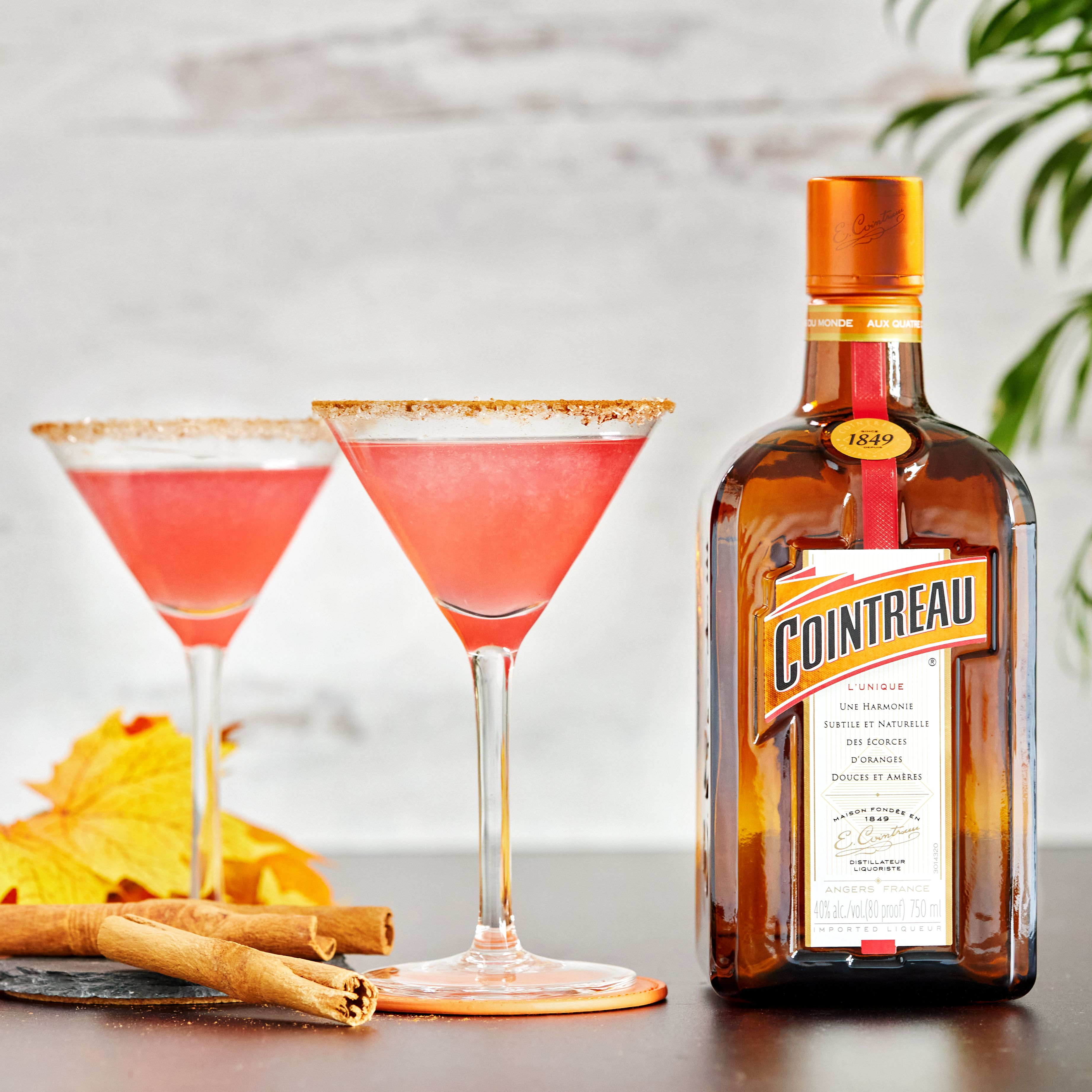 Harvest Cosmo Drinks Alcohol Recipes Alcohol Drink Recipes Mixed Drinks Recipes