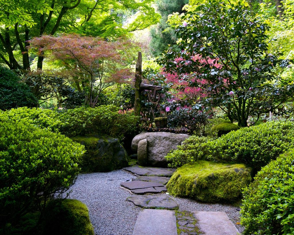 Well And Camellia Japanese Garden Landscape Japanese Garden Design Japan Garden