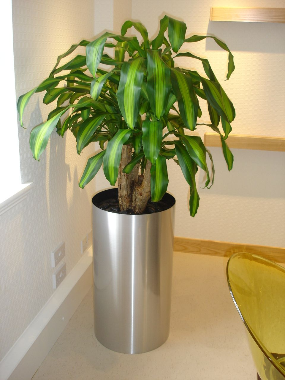 Large Silver Cylinder Planter With