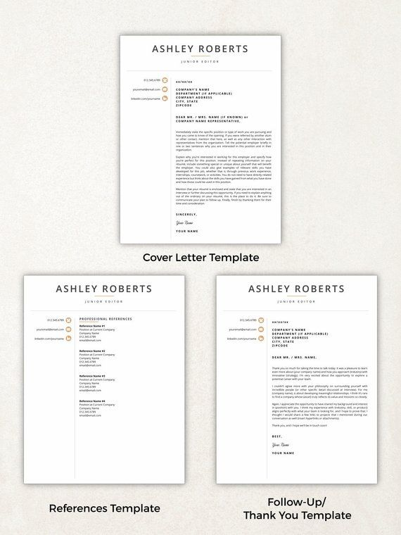 resume template modern resume resumes free resume template