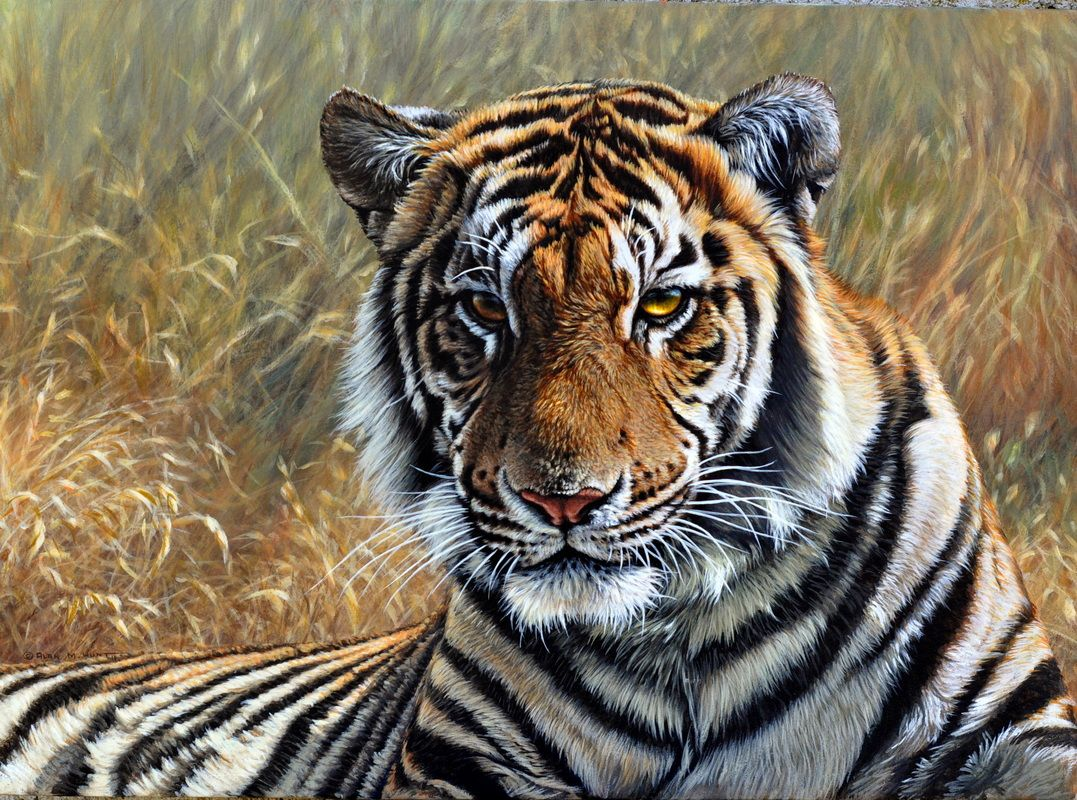 Alan M Hunt Wildlife Artist UK Art Original Wildlife