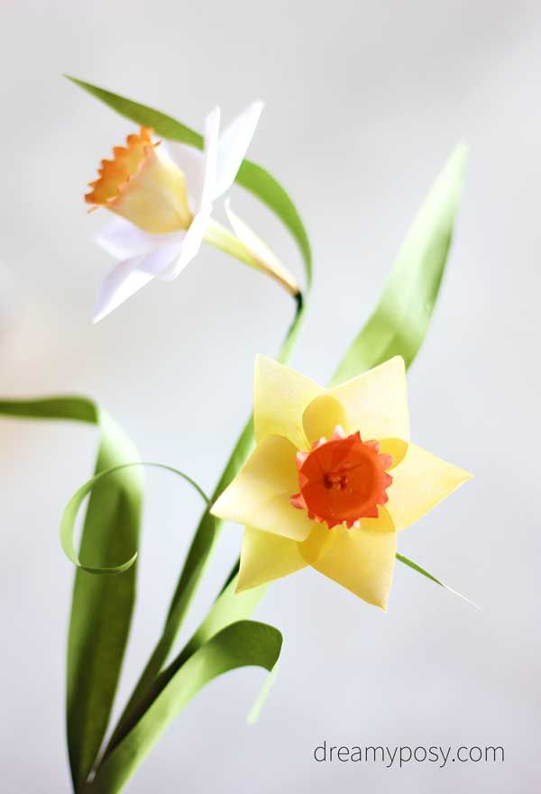 How to make paper daffodil flower out of printer paper free how to make paper daffodil flower out of printer paper free template mightylinksfo