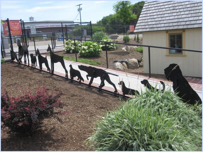 "Provincetown ""Bark Park"" Indoor dog park, Dog playground"