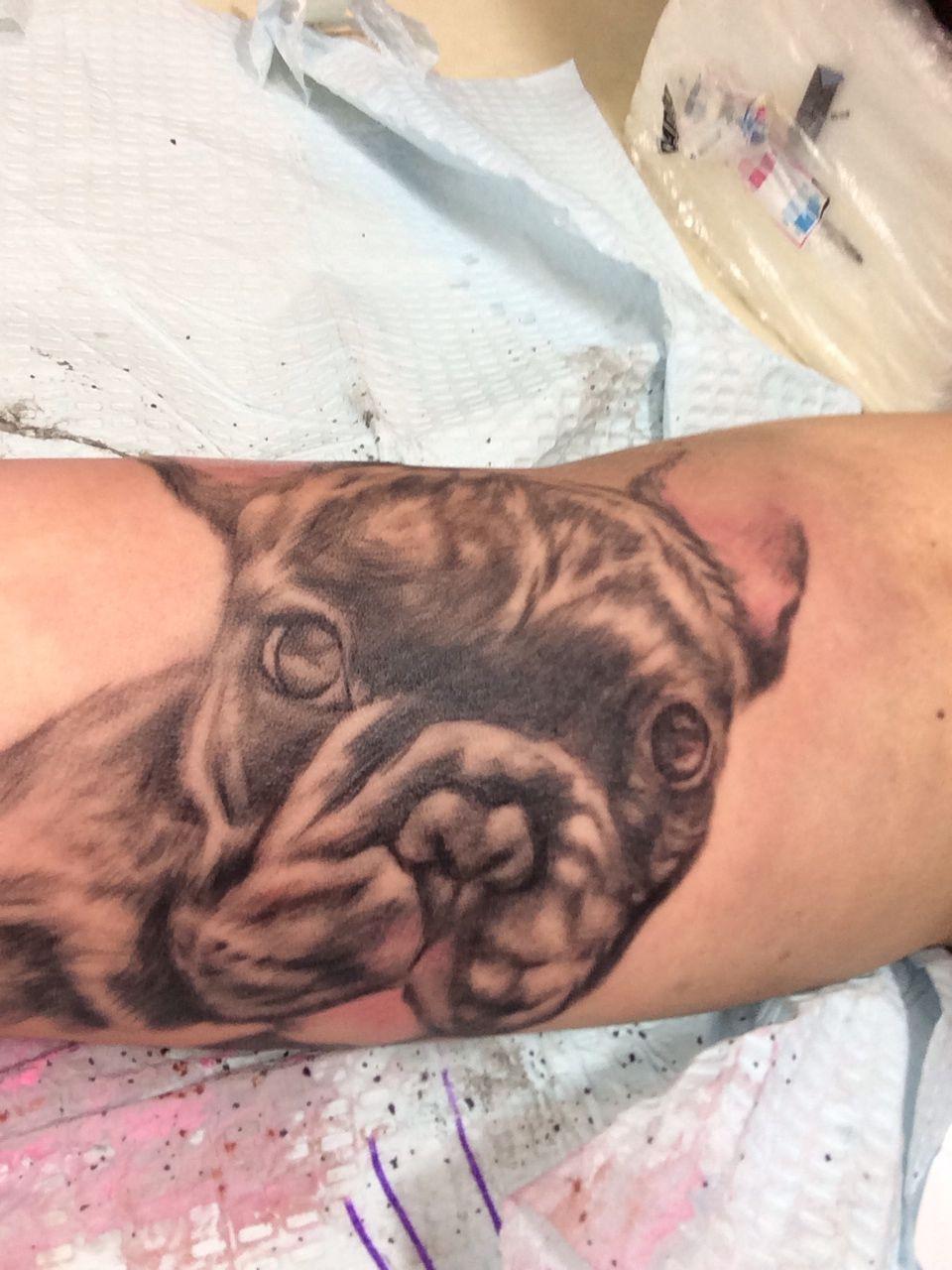 French bulldog portrait tattoo Tats