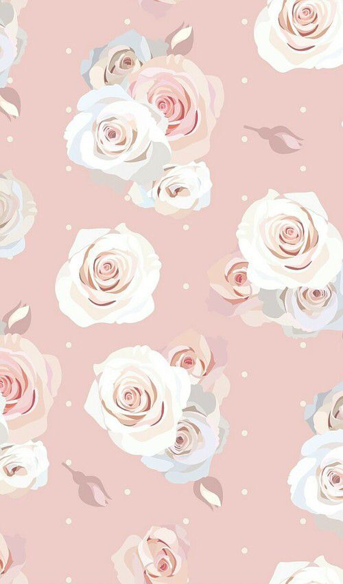 Pastel Blush Pink Cream Roses Phone Iphone Background Wallpaper