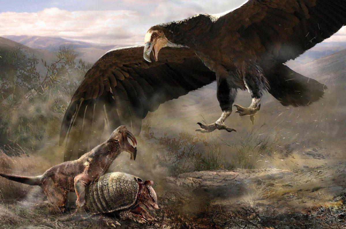 Resultado de imagem para argentavis hunting paleoart