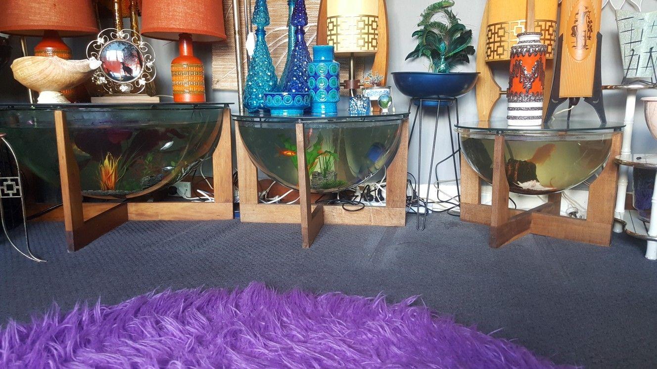 Trio Of Coffee Table Fish Tanks Terrarium Mid Century Retro Vintage Trio Of Fish Tank Coffee Tab Fish Tank Coffee Table Fish Tank Terrarium Retro Mid Century [ 747 x 1328 Pixel ]