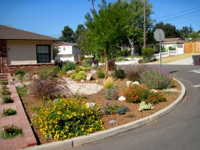 California Drought Resistant Landscaping Ideas Tolerant Front Yard