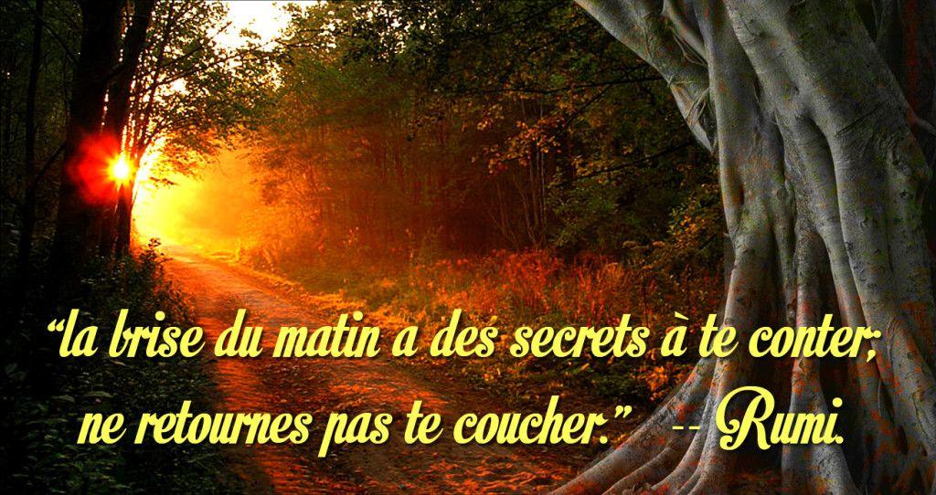 La Brise Du Matin De Rumi Citations Rumi Citation Et Je