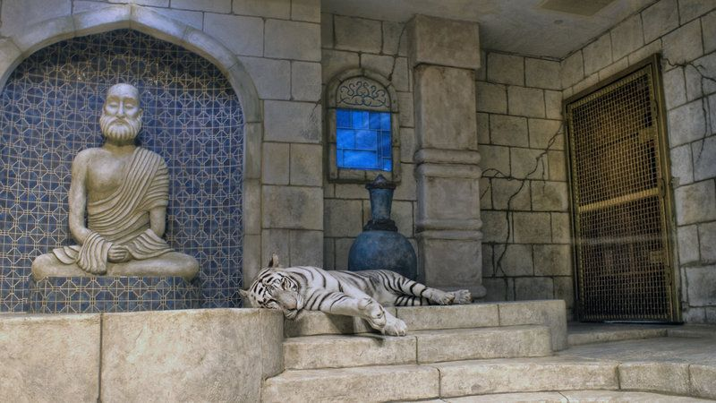 Don Lichterman Official Blog: Tigers In Captivity, Tigers
