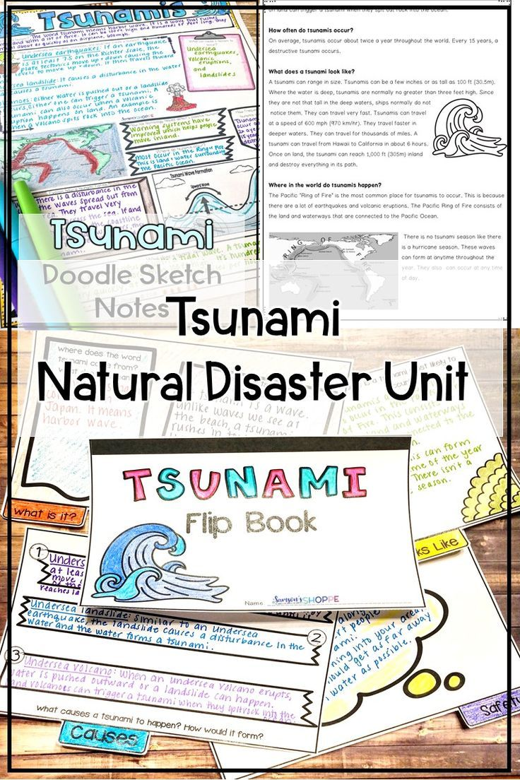 Tsunami Wild Weather Unit of Nonfiction Article Flipbook