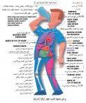 الشفاء بجهاز الرقية الشرعية على الماء Smurfs Fictional Characters Ads