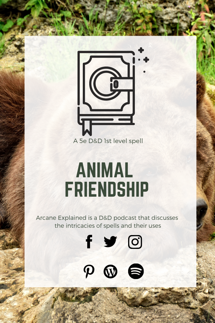 Arcane ExplainedEpisode 08 Animal Friendship Animals