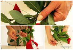 Photo of DIY laurel wreath – Silviadeifiori