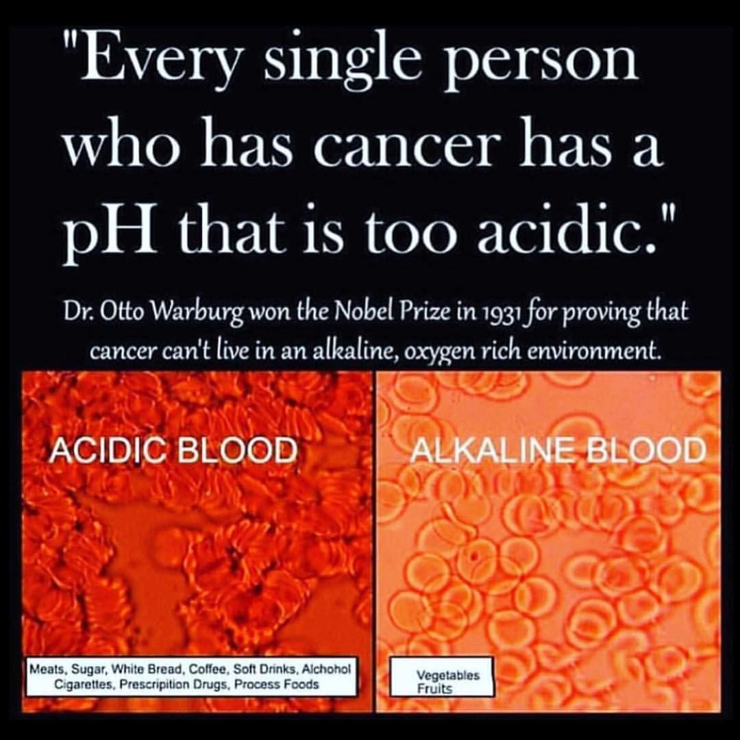 Dr Otto Warburg Stated That The Prime Cause Of Cancer Is The Replacement Of The Respiration Of Oxygen In Normal Body Cells B Warburg Alkaline Vegan Vegan News