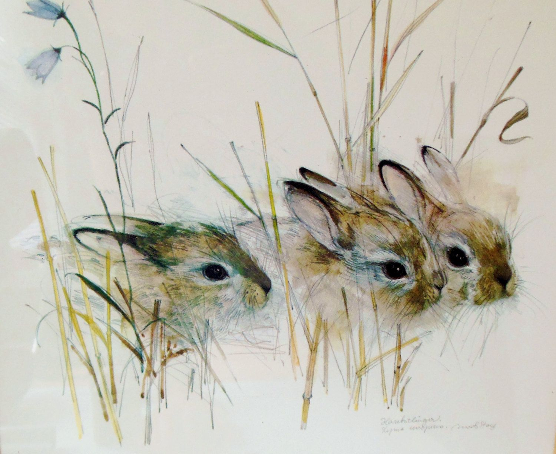 Rabbit Watercolor Harekelinger Danish Artist Art Forest
