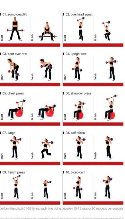 55 Trendy Fitness Exercises At Home Strength Training Weight Training Women Barbell Workout Weight Training Workouts
