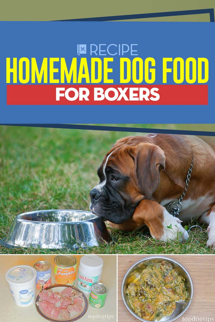 Recipe Homemade Dog Food For Boxers Dog Food Recipes Homemade Dog Food Food Animals