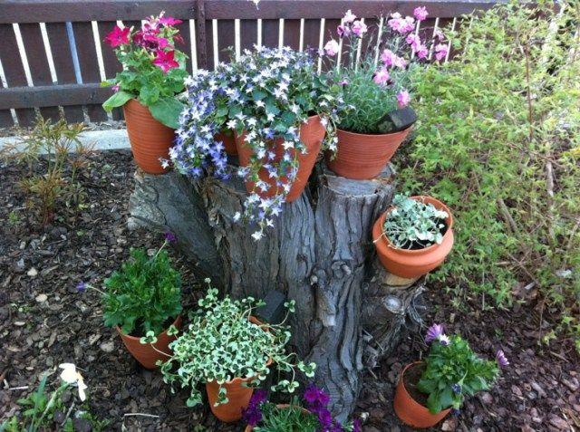 Flores bonitas en el en un tronco para decorar el jardin for Como decorar un arbol de jardin