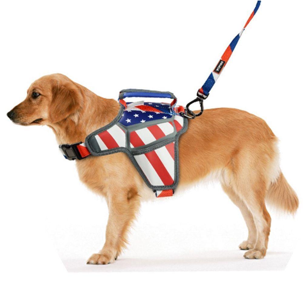 Dog Massage Harness World Cup Series Fashionable Design