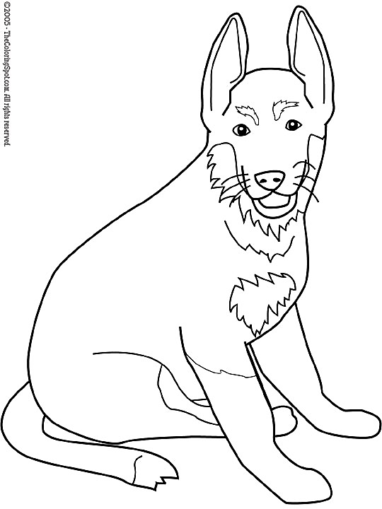 Kleurplaten Honden Duitse Herder.Kleurplaat Honden Strawberry Shortcake Then And Now