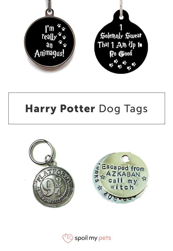 Harry potter dog tags harrypotter dogtags dogs harry