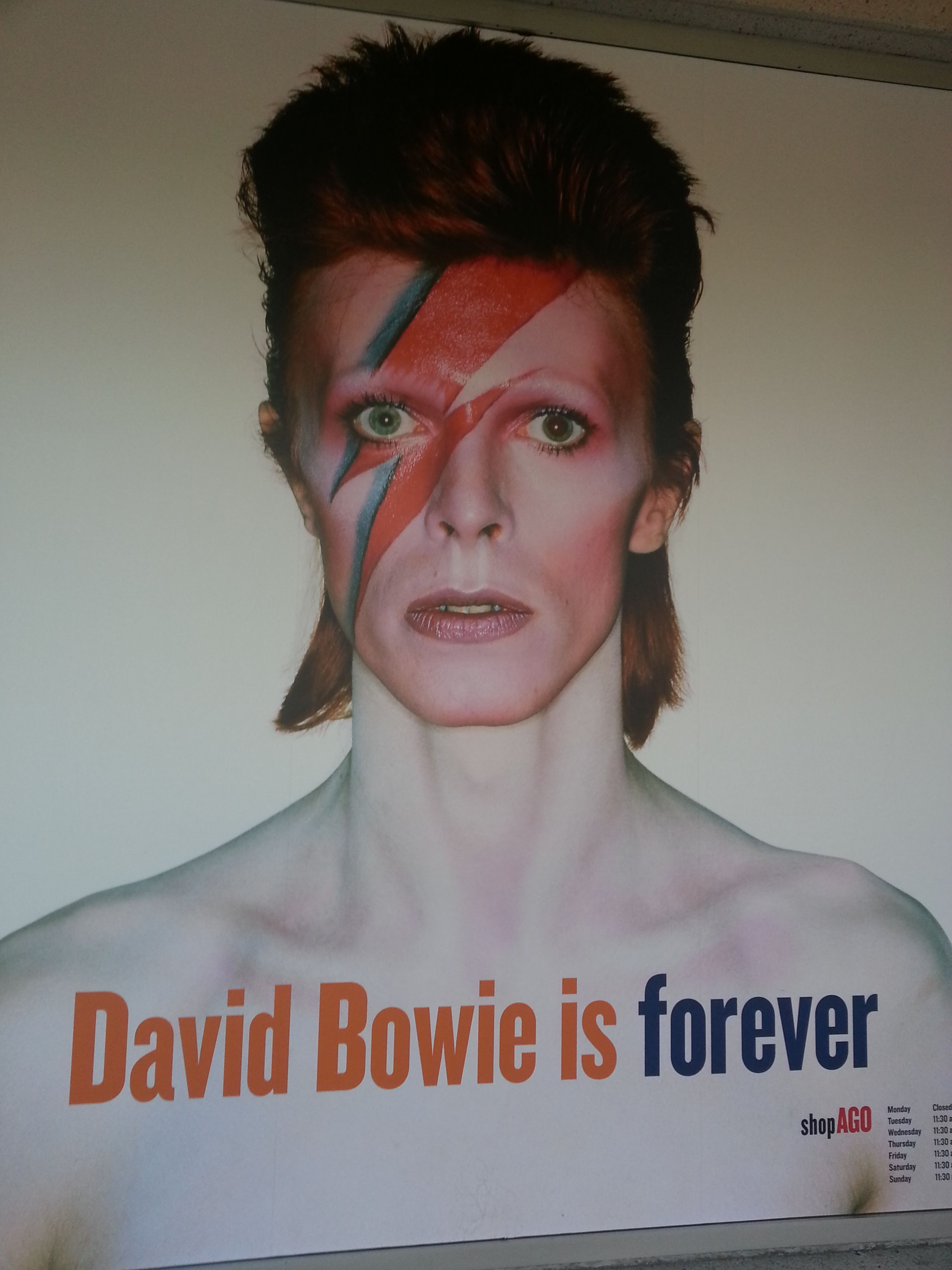September 20, 2014: The 'David Bowie Is' exhibit opens with a Gala and pre-show, the official opening occurred at The Museum of Contemporary Art Chicago and artEdge 2014. There were showings in both the U.S. and Europe, running through January 4th, 2015.