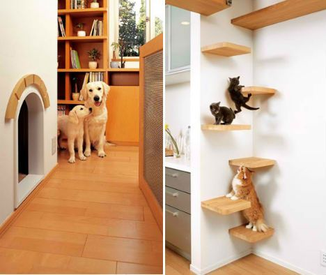 For the Dogs: These Japanese Homes are Pet Playgrounds | Designs & Ideas on Dornob
